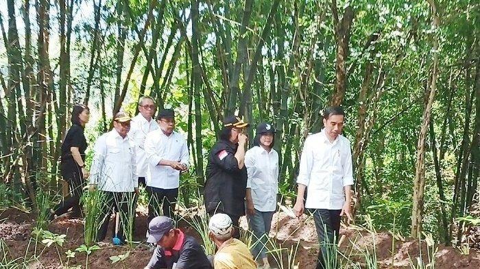 Presiden Republik Indonesia, Joko Widodo dan Ibu Negara Iriana Jokowi saat menanam pohon di Dusun Tanduran, Desa Jatisari, Kecamatan Jatisrono, Wonogiri, Sabtu (15/2/2020).