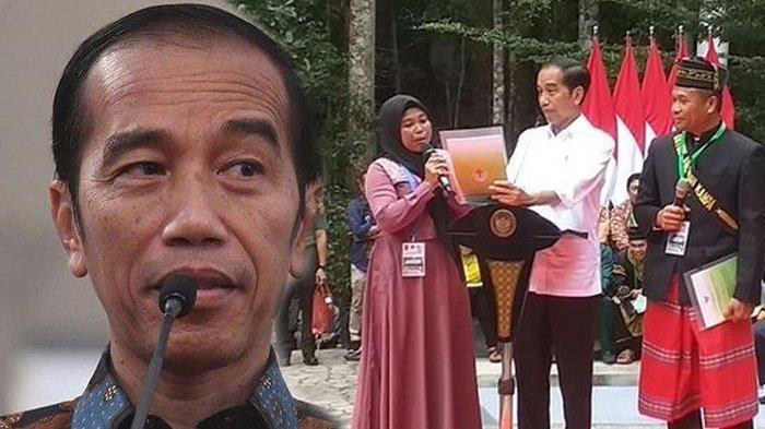 Jokowi Minta Ada Pendampingan Dalam Pengelolaan Perhutanan Sosial, Manfaatnya Banyak Sekali
