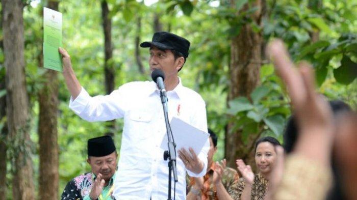 Jokowi Serahkan SK Perhutanan Sosial di Wilayah Perhutani Jawa Barat