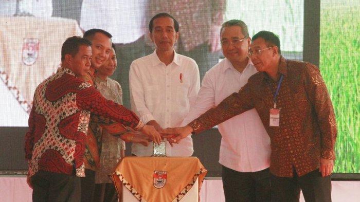 Presiden Saksikan Efek Positif Korporatisasi Pertanian, Program PRUKADES Diresmikan