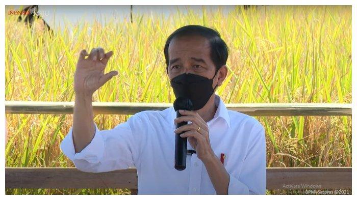 Jokowi: Butuh Sinergi Kekuatan Bangsa Memecahkan Masalah Kesehatan-Ekonomi Akibat Pandemi