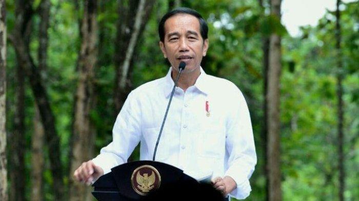 Jokowi Undang Investor Dunia Berinvestasi di Ibu Kota Baru RI