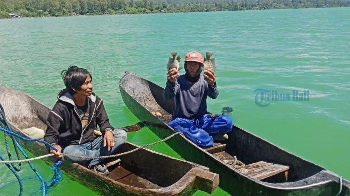 Pembudaya Ikan Masih Resah Meski Perubahaan Warna Air Danau  Batur ke Arah Normal