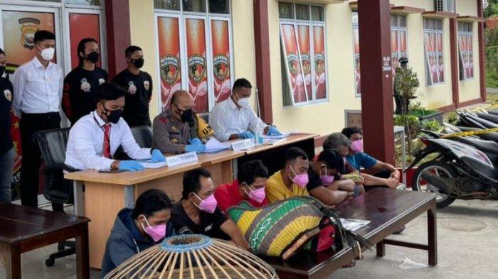 Polres Kepahiang Amankan 7 Orang dari Lokasi Judi Sabung Ayam
