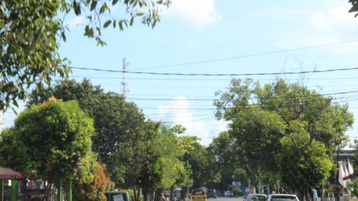 Dukung Pariwisata, Pengusaha Bus Minta Pemerintah Rapikan Kabel di Jalan Raya