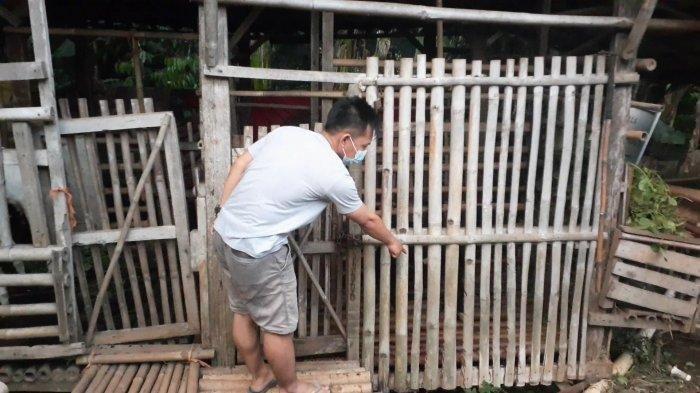 7 Ekor Kambing di Serpong Hilang, Tersisa Isi Perutnya Saja di Kandang, Suhendar Merasa Dihipnotis