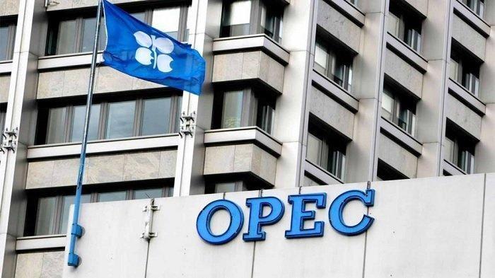 Rusia Berharap OPEC + Kurangi Pemangkasan Produksi Minyak pada Agustus 2020