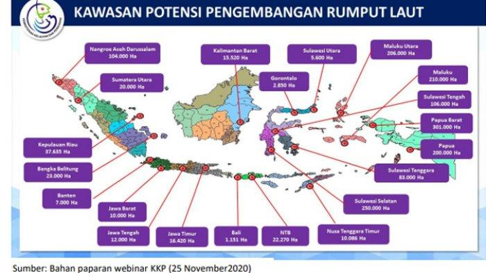 Kawasan Potensi Pengembangan Rumput Laut.