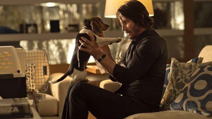 Keanu Reeves dalam film John Wick.