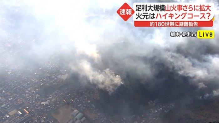 Parah Kebakaran Hutan di Jepang Hari Ke-4 Ungsikan 100 Rumah Tangga