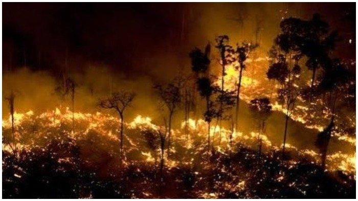 Kebakaran hebat di hutan hujan Amazon.