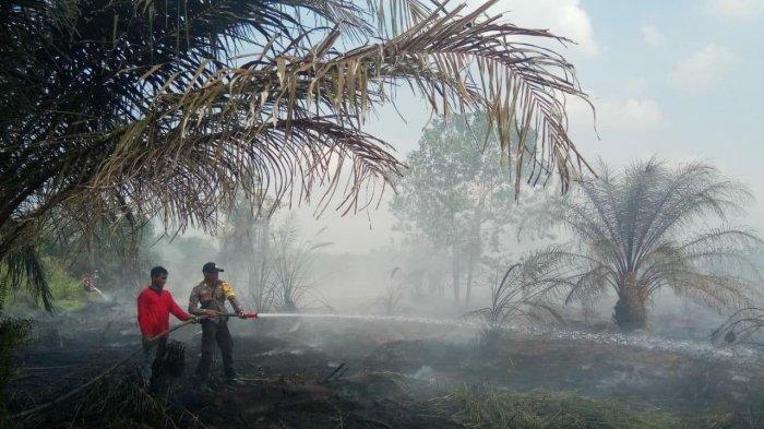 Kebakaran hutan dan lahan (karhutla) di Tanjab Barat.