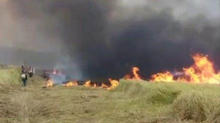 Peringatan Dini BMKG Besok Sabtu, 14 September 2019: Waspada Kebakaran Hutan dan Gelombang Tinggi