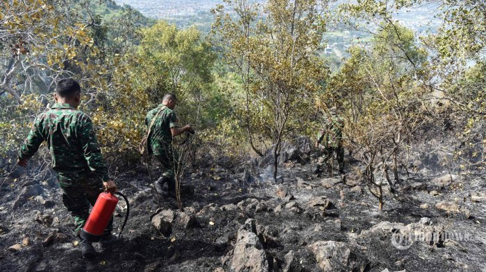 BPBD Riau Belum Cabut Status Siaga Karhutla