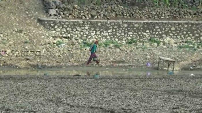 Hujan Belum Merata, BPBD Gunungkidul Tetapkan Status Darurat Kekeringan