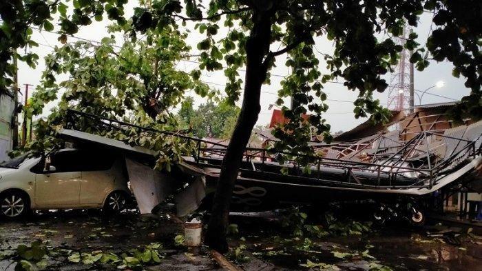 Pohon Tumbang di Jalan Raya Bogor Km. 36 Saat Lalu Lintas Ramai