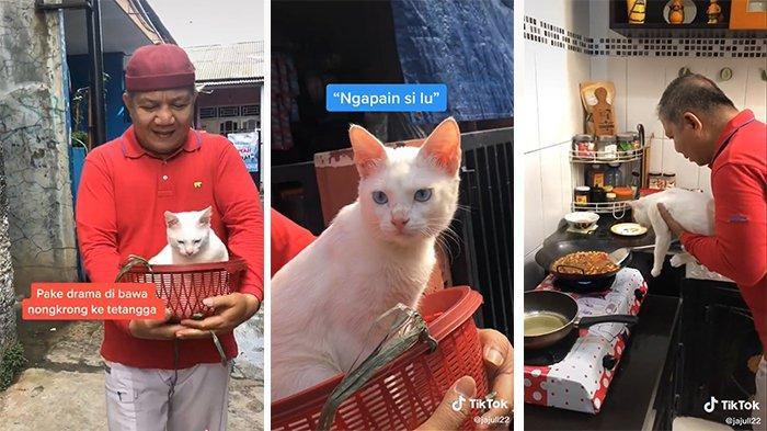 Video Tiktok Seorang Ayah Manjakan Kucingnya Awalnya Tak Mau Pelihara Tapi Akhirnya Jatuh Cinta Tribunnews Com Mobile