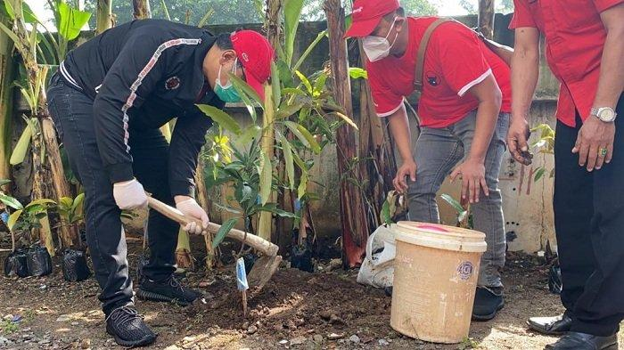 Politikus PDIP Eriko Sotarduga Lakukan Aksi Tanam Pohon di Bantaran Kali Ciliwung