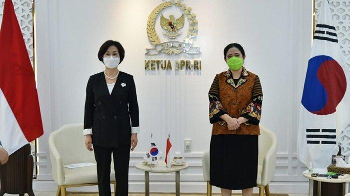 Bertemu Wakil Ketua Parlemen Korea Selatan, Puan Dorong Penguatan Kerja Sama Penanganan Covid-19