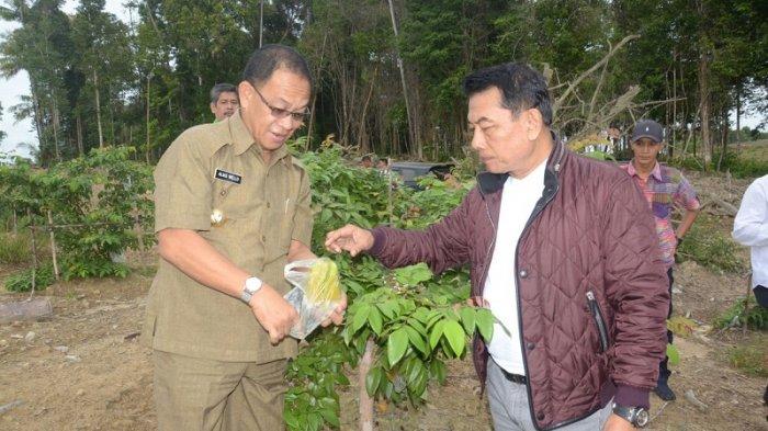 Ketua Umum Himpunan Kerukunan Tani Indonesia Bangun Kebun Buah Seluas 50 Ha di Lingga