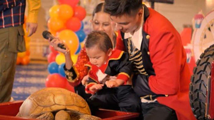 Kiano Tiger Wong melihat kura-kura hadiah ulang tahun dari Putra sulung Raffi Ahmad dan Nagita Slavina, Rafathar Malik Ahmad.