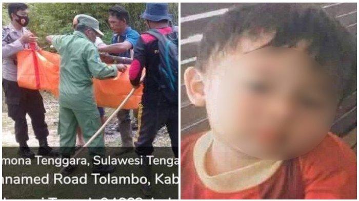 15 Hari Hilang dari Rumah, Bocah 3 Tahun di Poso Akhirnya Ditemukan Tewas di Perkebunan Warga