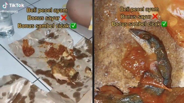 Kisah viral gadis menemukan cicak disambal saat makan pecel ayam, ungkap trauma dan langsung dimuntahkan.