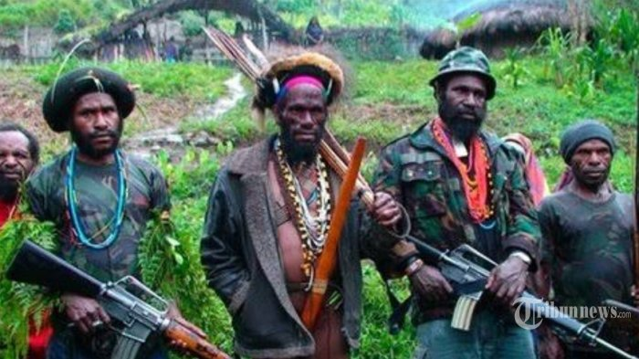 DPR Minta Pemerintah Buka Ruang Dialog Atasi KKB yang Terus Lancarkan Teror di Papua