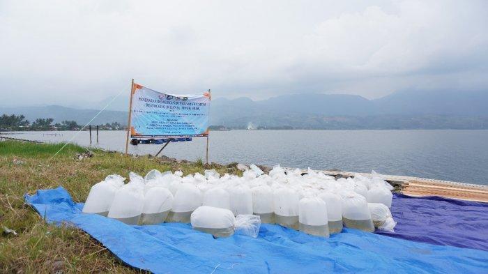 KKP Sepakat Bersama Pemda Sumatera Barat Membangun National Bilih Center di Danau Singkarak