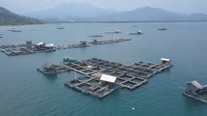 KKP dan Prancis Perkuat Kerja Sama Mendorong Produktivitas Perikanan Budidaya Laut