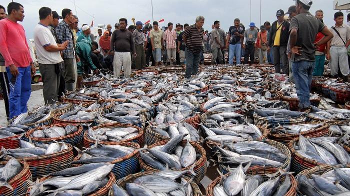 Menhub Dukung Pembangunan Kawasan Terpadu Pelabuhan Perikanan di Maluku