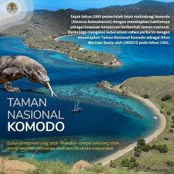 Taman Nasional Komodo telah ditetapkan sebagai satu di antara situs Warisan Dunia oleh UNESCO pada 1991.