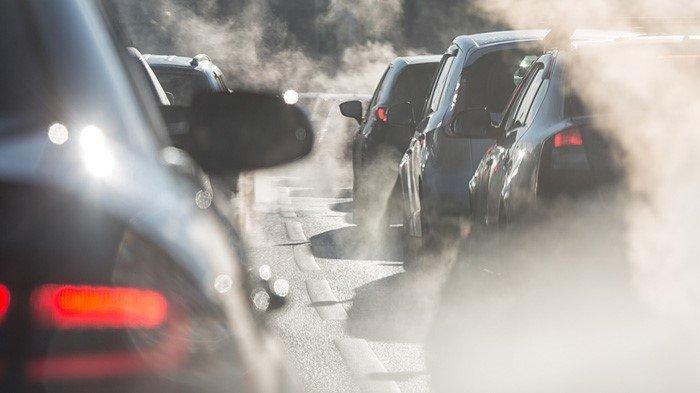 Kondisi Udara Yang Buruk Tingkatkan Risiko Alergi Anak?