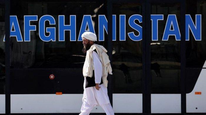 Taliban Adopsi Konstitusi Monarki Zaman Zahir Shah Yang Diamandemen