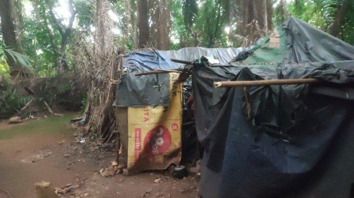Kisah Suami-Istri yang Tinggal di Gubuk Beratap Plastik dan Berdinding Kardus di Dekat Tol Jagorawi