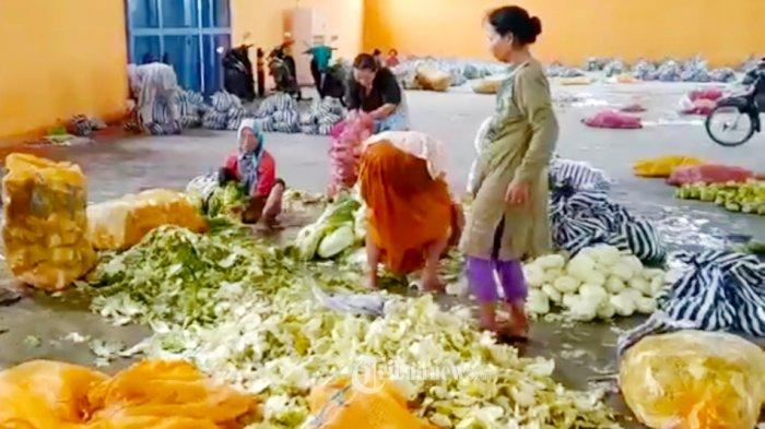 KPM Beli Sayur Mayur Murah di Pedagang E-warong, 3 Jenis Sayur Mayur Dengan Harga Rp 14.500