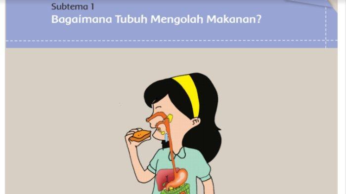 Kunci Jawaban Buku Tematik Sd Kelas 5 Tema 3 Makanan Sehat Subtema 1 Pembelajaran 1 Halaman 2 11 Tribunnews Com Mobile