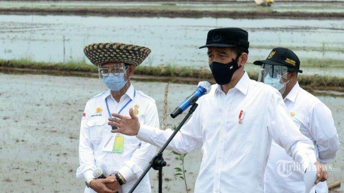 Setelah Kalteng, Sumut dan NTT, Jokowi Berencana Buka Food Estate Lagi di Daerah Lain
