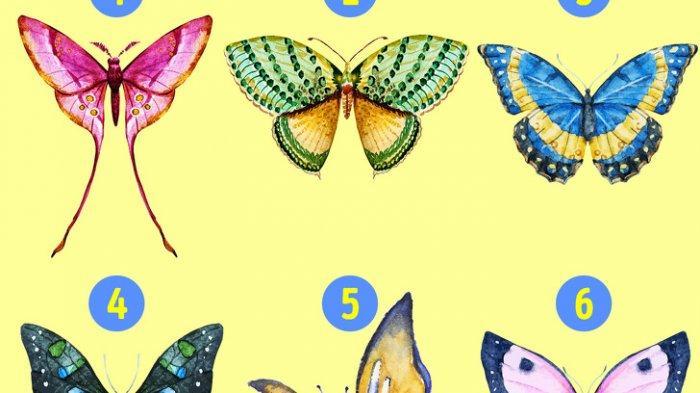 Tes Kepribadian - Kupu-kupu yang Kamu Pilih Dapat Ungkap Sisi Tersembunyi dari Kepribadianmu