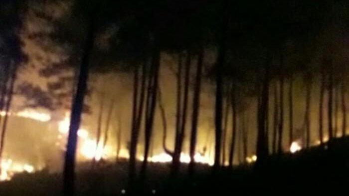 Dua Hektar Lahan Hutan Gunung Mapongka Tana Toraja Terbakar