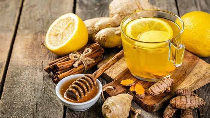 Ilustrasi bahan-bahan herbal.
