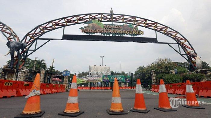 PSBB Transisi, Besok Taman Margasatwa Ragunan Kembali Dibuka, Pembelian Tiket Secara Online