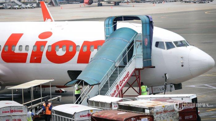 Aktivitas bongkar muat pesawat penumpang Lion Air yang dijadikan pesawat kargo di Bandara Soekarno-Hatta, Tangerang, Banten, Kamis (30/4/2020). Lion Air Group akan kembali beroperasi melayani rute domestik. Seluruh anggota Lion Air Group, yakni Lion Air, Wings Air, dan Batik Air akan mulai mengoperasikan layanan penerbangan domestik pada 3 Mei 2020. Tribunnews/Jeprima (Tribunnews/Jeprima)