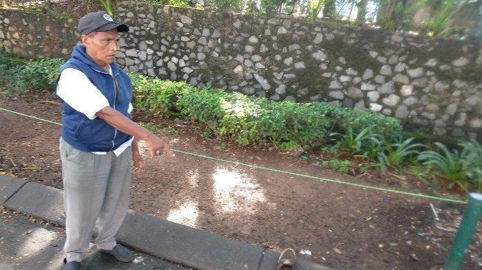 4 Pemuda Kejang-kejang di Pinggir Jalan usai Tenggak Kopi, Diduga Kopi Dicampur Obat