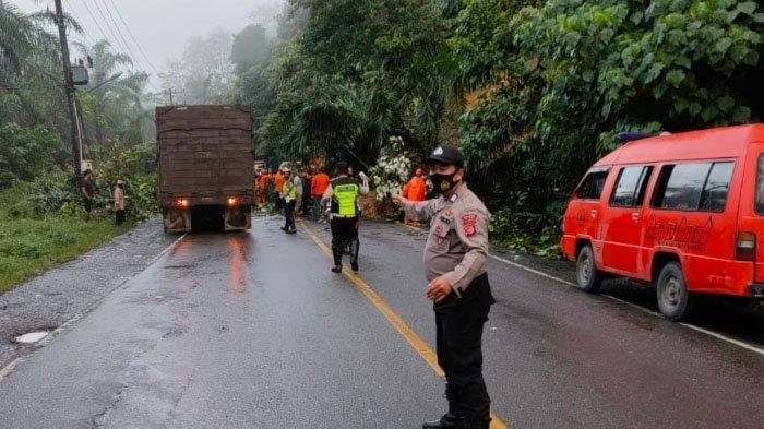 BREAKING NEWS: Longsor di Perbukitan Seumadam Memutus Jalur Banda Aceh - Medan
