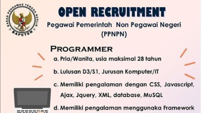 Badan Pengawas Tenaga Nuklir Buka Lowongan Kerja Posisi Programmer, Pendaftaran hingga 22 Agustus