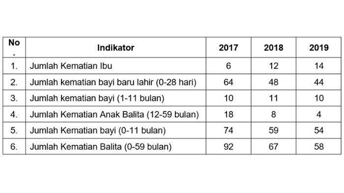 LPPD 2019 Pemkot Bogor.