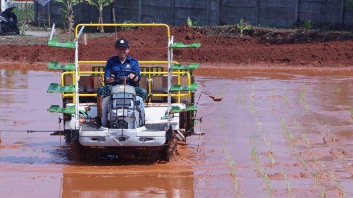 Teknologi alat pertanian.