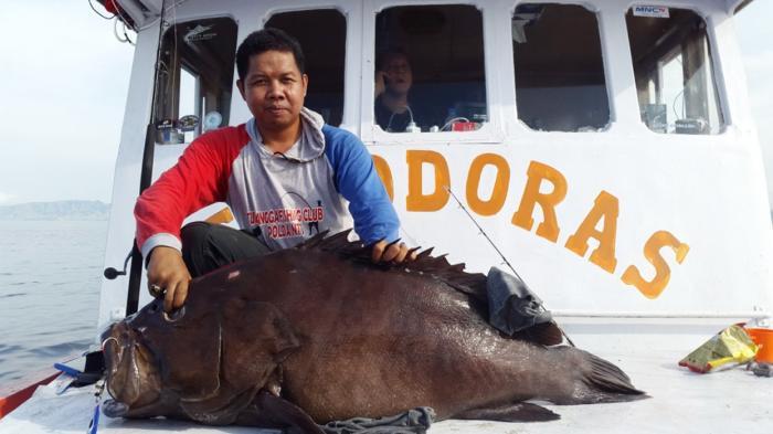 Ikan hasil memancing di laut NTT.