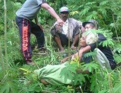 Jenazah Pendaki Tak Dikenal Ditemukan Membusuk di Gunung Lawu Wilayah Magetan